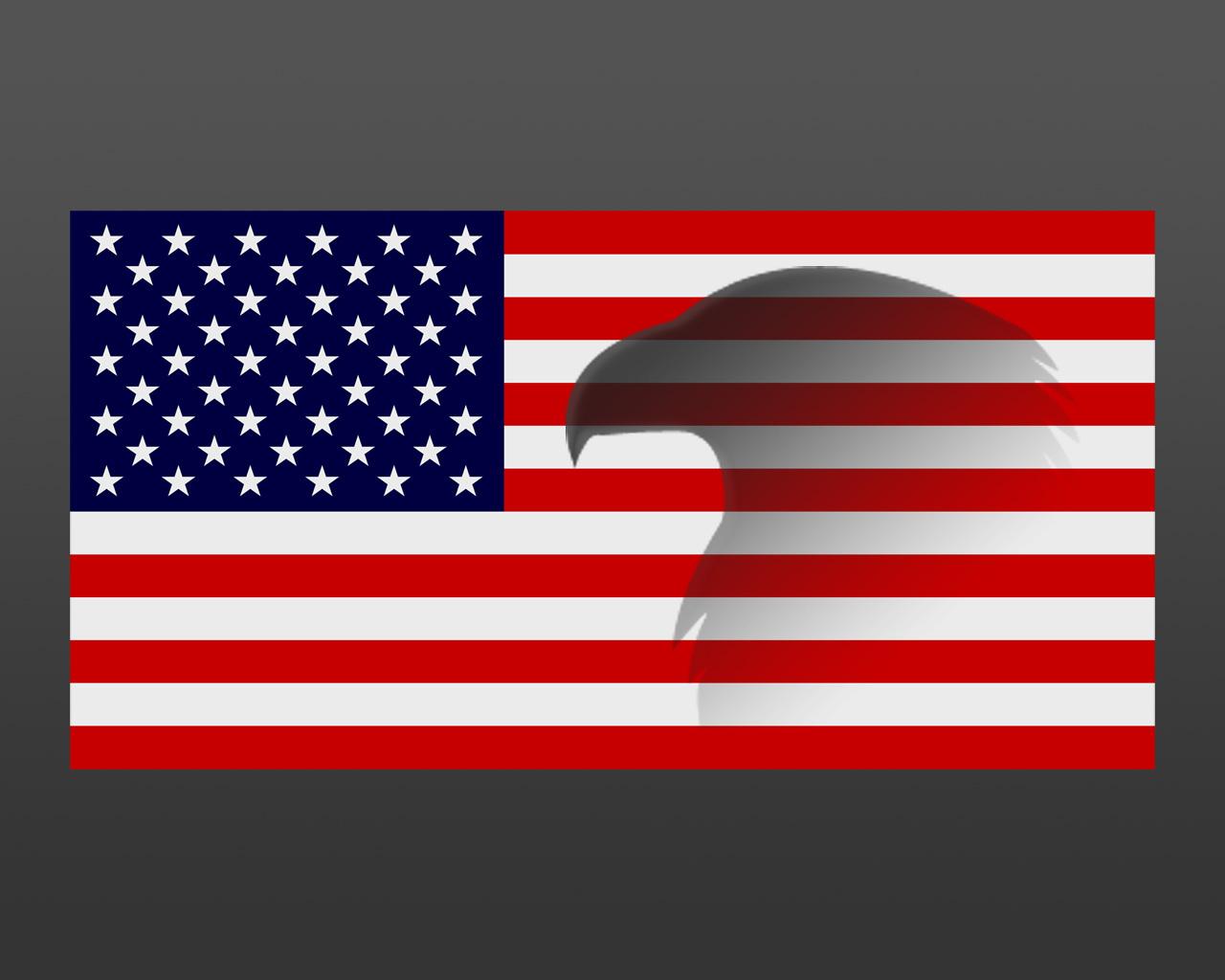 Moleskinex19 American Flag Eagle