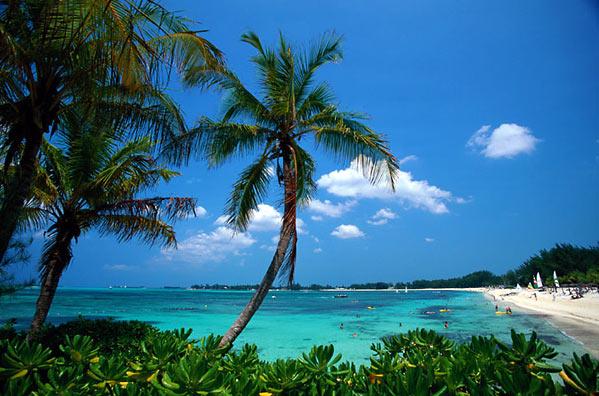 Carribean Beauty: Tweet