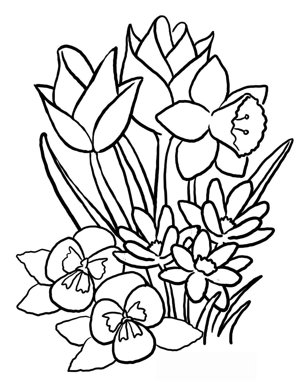 Page de coloriage grand format  imprimer fleurs de différentes variétés