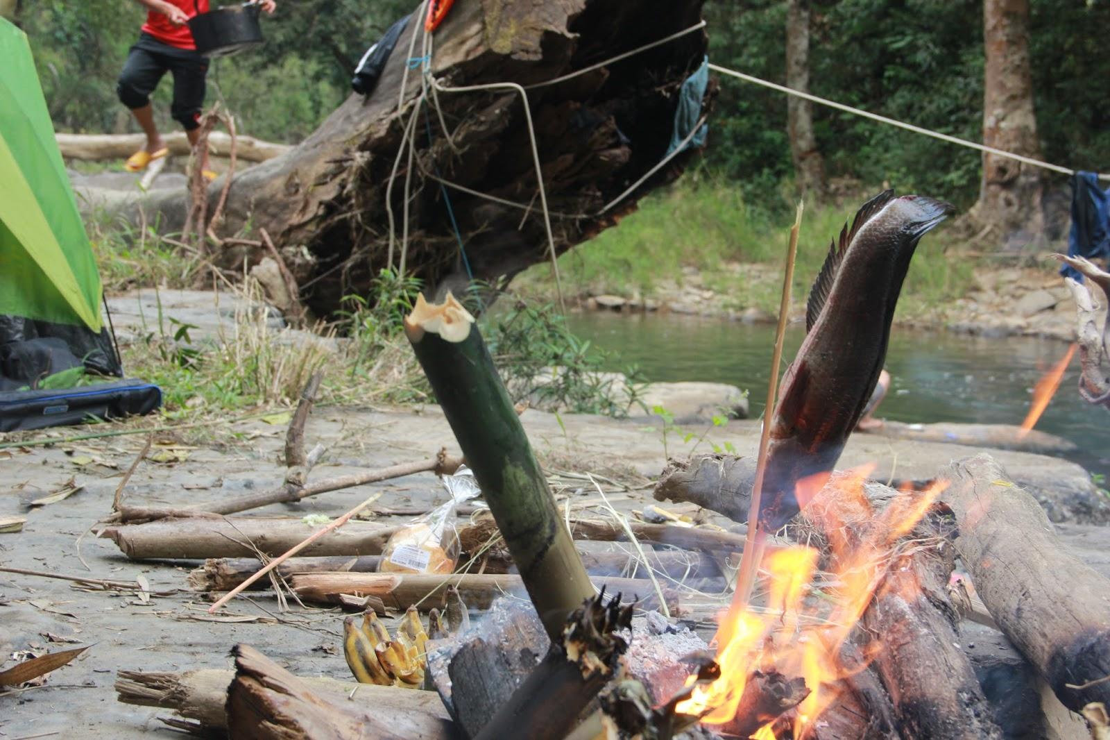 """Thác Phi Liêng - """"Báu vật"""" ẩn mình giữa rừng sâu (Phóng sự ảnh)"""