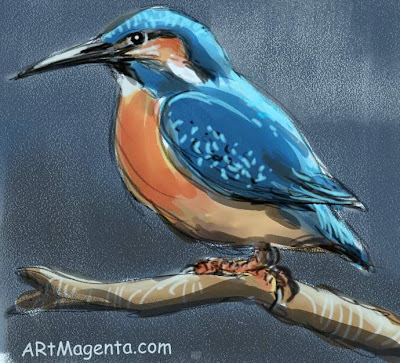Kingfisher, a bird sketch by Artmagenta