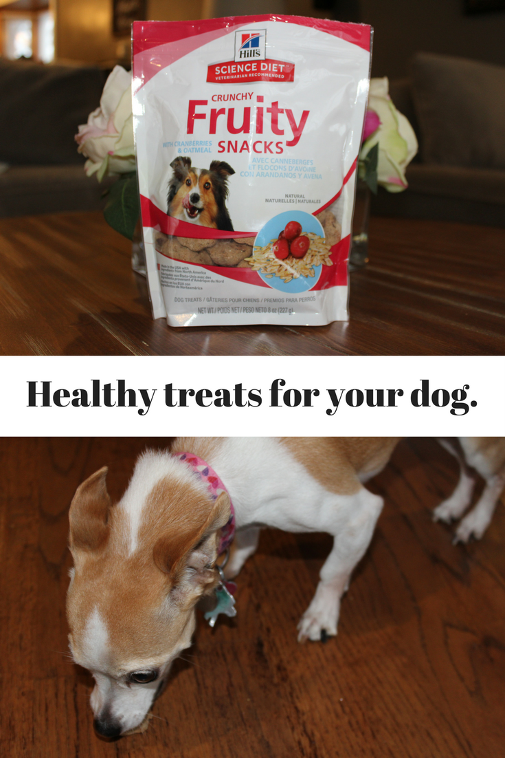 Mom Among Chaos: Hill's Science Diet Dog Treats