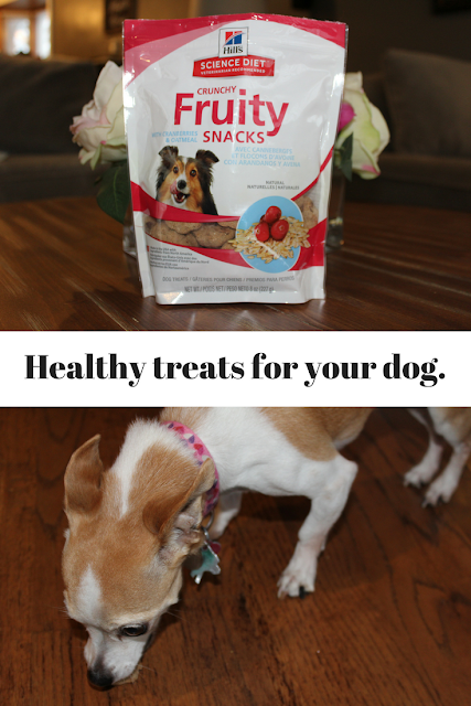 Hill's Science Diet Dog Treats, dog treats, homemade, recipes, easy, grain free, peanut butter, healthy,