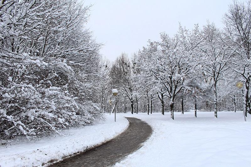 O que fazer em Munique no inverno | Dicas de Berlim e Alemanha