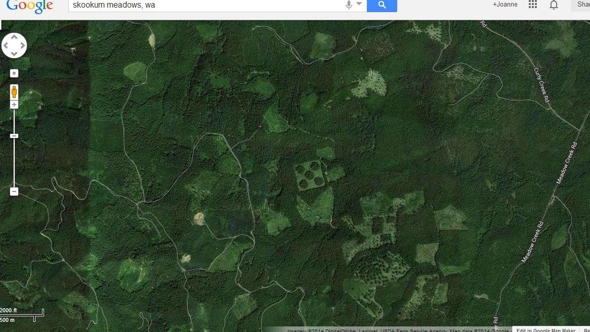 Tahoma Beadworks & Photography: Weird Things on Google Maps ...