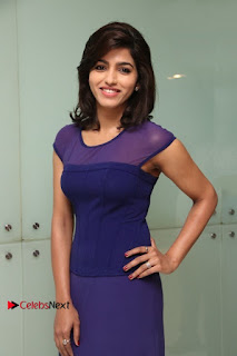 Tamil Actress Dhansika Stills in Purple Long Dress at Simba Audio Launch  0008.jpg