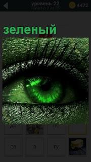 Зрачок глаза и все вокруг зеленого цвета, кроме ресниц . Вся оболочка и зрачок в том числе