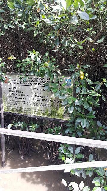 Lokasi hutan bakau (Mangrove) Margomulyo