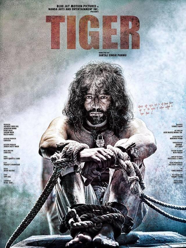 Tiger (2016) -