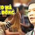 Bộ trưởng Trần Tuấn Anh nói gì về bê bối của vợ - người đẹp Thủy Hương?