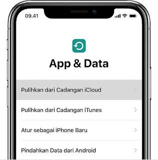 App & Data Iphone