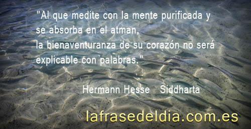 Siddharta Frases Frasearte