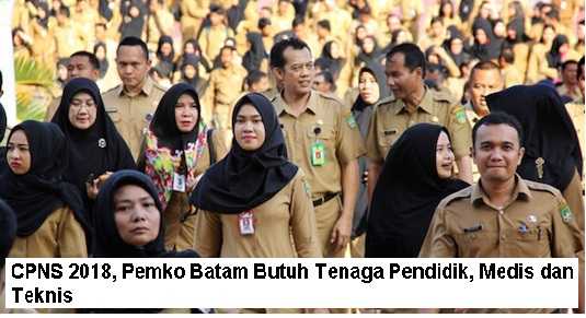 Lowongan Kerja  CPNS , Pemko Batam Butuh Tenaga Pendidik, Medis dan Teknis  Juni 2018