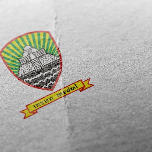 Logo Insun Medal