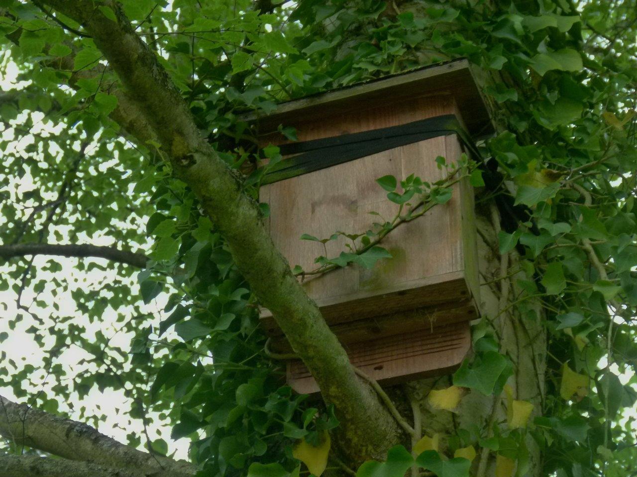 Le blog de parcs et jardins de l 39 oise visite pjo du for Catherine de jardin
