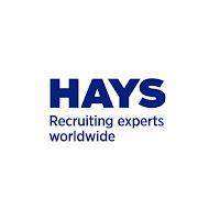 Job Opportunity at Hays, Chief Financial Officer- Nafasi za Kazi Tanzania 2018