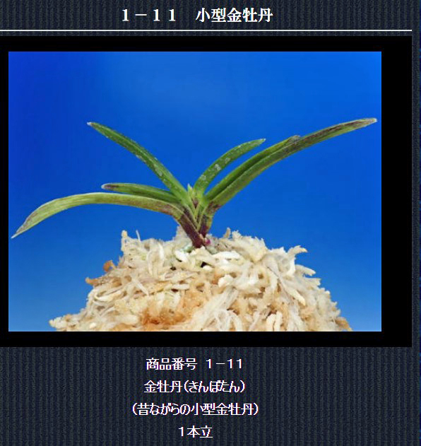 http://www.fuuran.jp/1-11.html