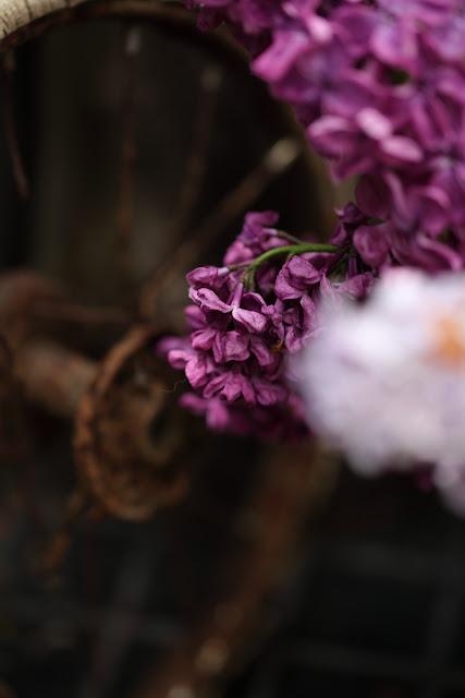 syreeni, #kukkailottelua, still life flovers, lilac