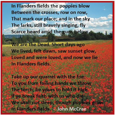 Image result for poppy poem