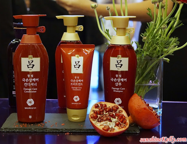 Ryo x Watsons, korea haircare, ryo sampoo, ryo, watsons, Korea Top Herbal Hair Care, hair care, beauty, herbal haircare, korea herbal haircare, Hair Loss, Damage Hair, Scalp Deep Cleansing, dandruff Relief