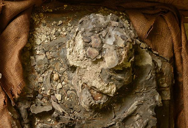The Rediscovery of 'Noah', A 6,500 Year Old Skeleton, Who Survived A Great Flood