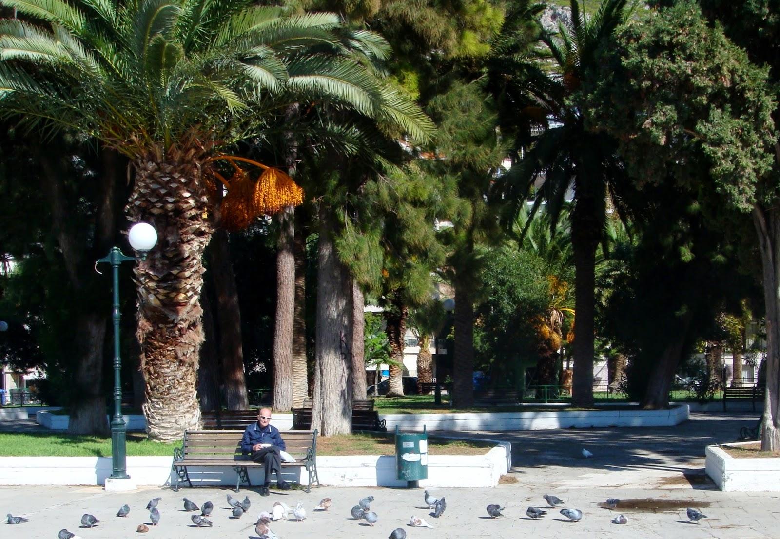 Pigeons- Loutraki Park