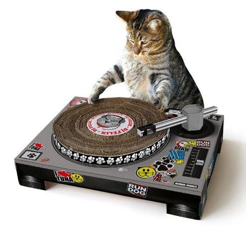 carton et chat 14