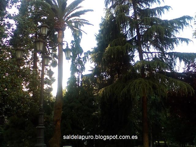 parque-san-francisco-oviedo