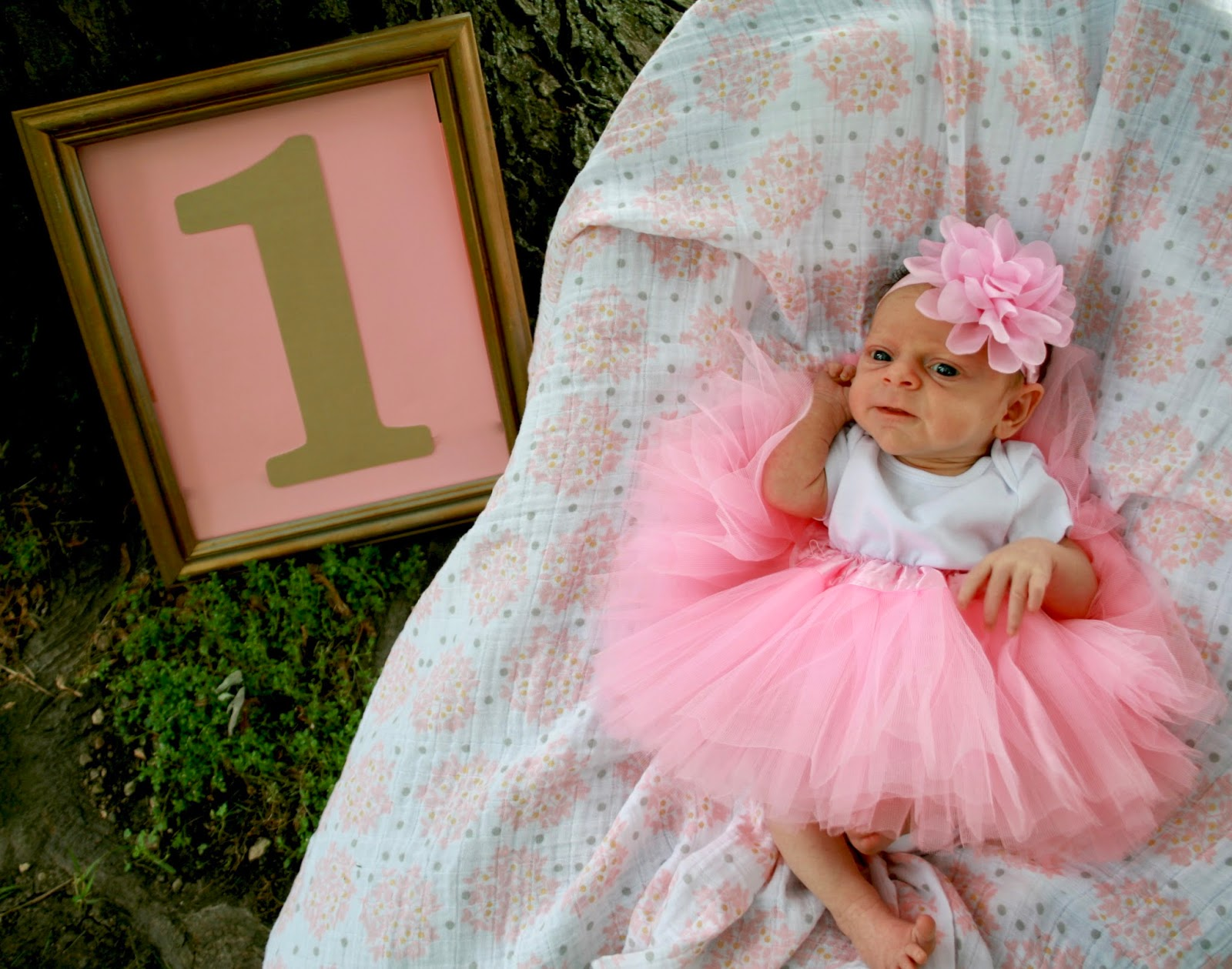 Amy S Creative Pursuits One Month Old Baby Photo Shoot