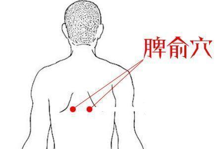 一刮通肝,心,脾,腎,肺,胃 - 穴道經絡引導