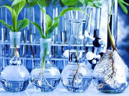 Permasalahan Biologi pada Berbagai Tingkat Organisasi Kehidupan