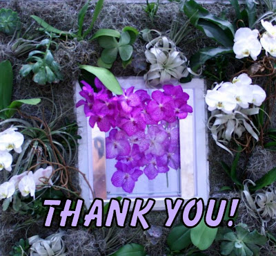 Thank you!! from All Pretty Things