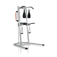 Bowflex Body Tower, multi-station workout tower with EZ-adjust horizontal bars, hand grips and sling straps