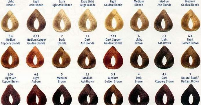 Confessions of a Makeup Fiend Understanding Hair color And Developers - hair color chart