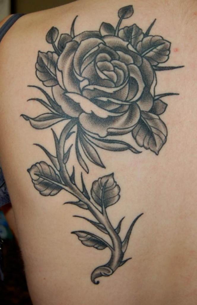 black rose tattoo design ideas photos images cute (8)