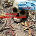 Corpo em decomposição é encontrado no povoado Cana Brava