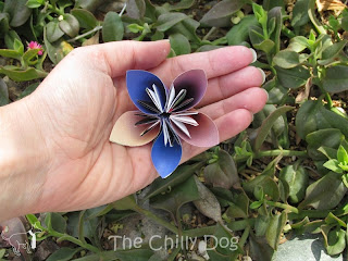Craft Tutorial: How to make an upcycled paper kusudama (origami) flower