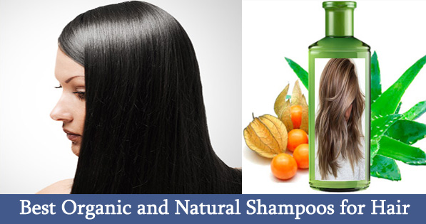 Best Organic and Natural Shampoos for Hair Loss