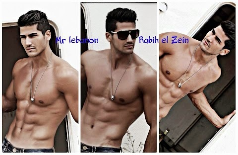 Mister Lebanon International 2014