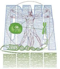 DNA'da Şifreleme Nasıl Yapılır?