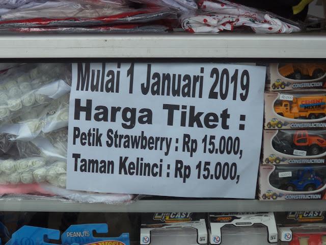 Tiket masuk wisata petik buah strawberry padusan Pacet Mojokerto