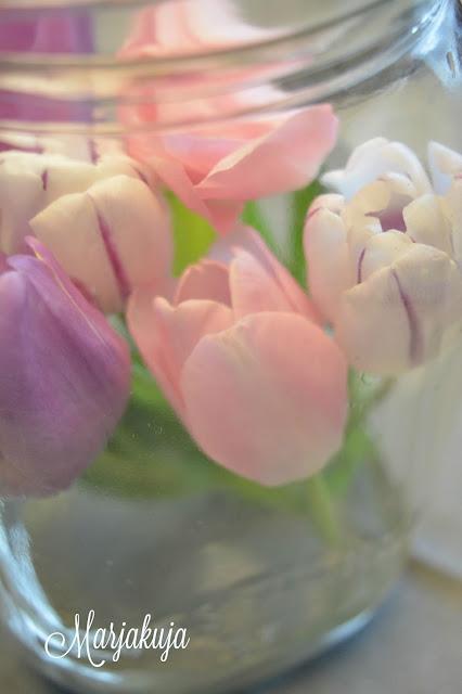 tulppaanit lasipurkissa