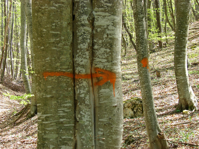 Оранжевые метки и указатели