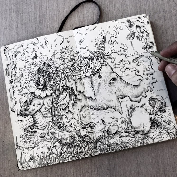 11-Drawing-in-my-sketchbook-to-relax-Tim-Ingle-Nature-Drawings-www-designstack-co
