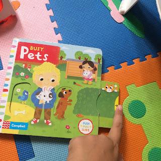 rekomendasi buku champbell pets