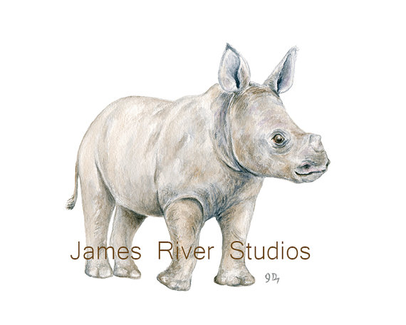 Finding Beauty In Life Watercolor Rhinoceros Baby Shower