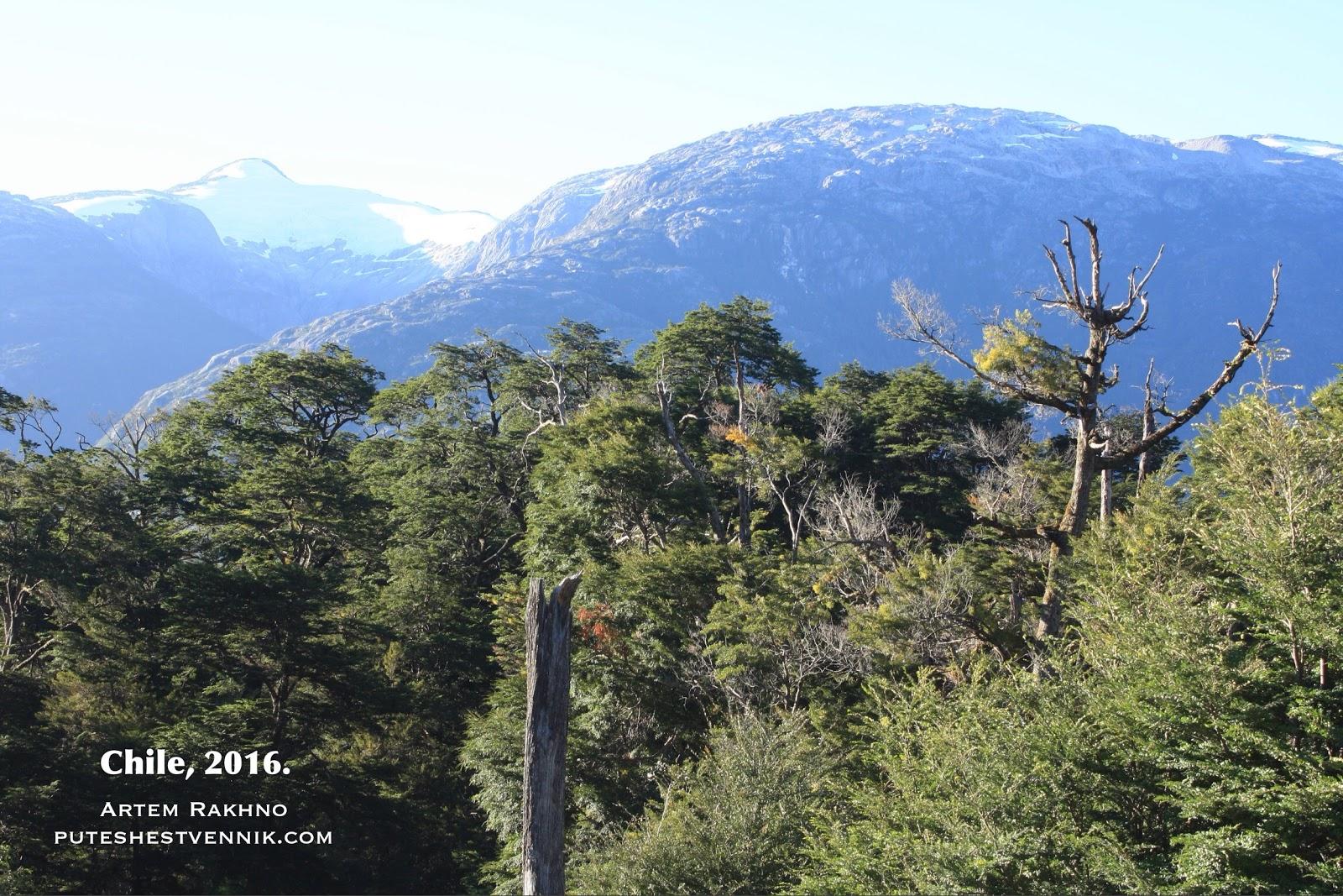 Горы и лес в Чили