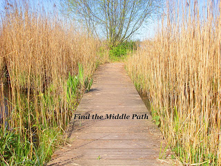 Image of a footpath with tall dried reeds on either side with text: Find the middle path