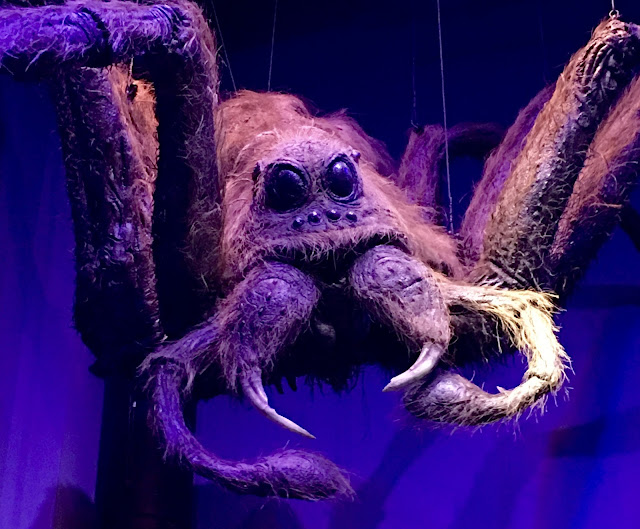 Harry Potter props, Warner Bros Studio Tour, London Aragog