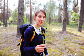 Naliboki forest, potovanje Belorusija